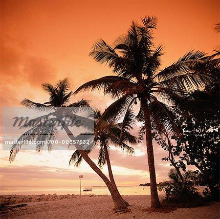 Coucher de soleil à Smathers Beach, Key West, Floride, États-Unis