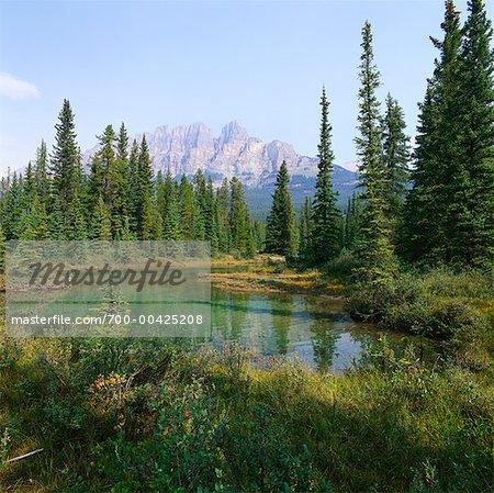 Castle Mountain, Parc National Banff, Alberta, Canada