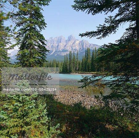 La rivière Athabasca, Parc National Jasper, Alberta, Canada