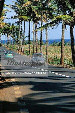 Cars on Road, Mauritius