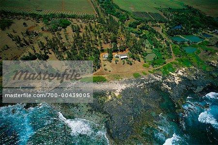 Aerial of Coast, Mauritius