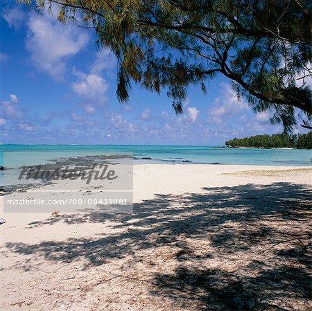 Banc de sable situé à l'Ile aux Cerfs Beach, Ile Maurice, l'océan Indien