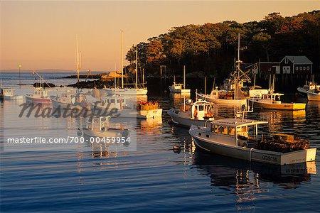 Boats in Harbor, New Harbor, Maine, USA