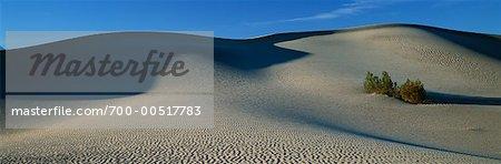 Dunes de sable à Death Valley, Californie, USA
