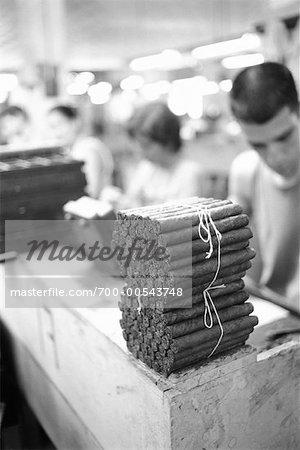 People Working in Cigar Factory