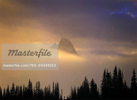Lever du soleil, vallée Tonquin, Parc National Jasper, Alberta, Canada