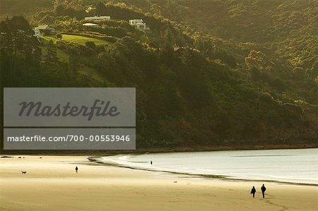 Onetangi Beach, Waiheke Island, New Zealand