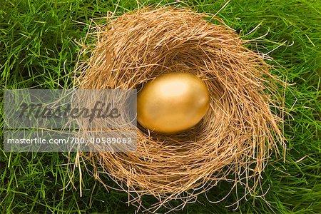 Golden Egg in Nest On Grass