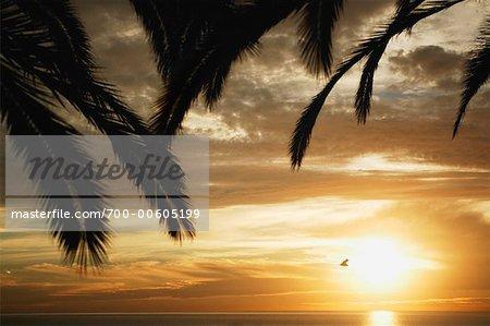 Sonnenuntergang, Santa Monica, Kalifornien, USA