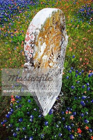 Headstone, Texas Hill Country, Texas, USA