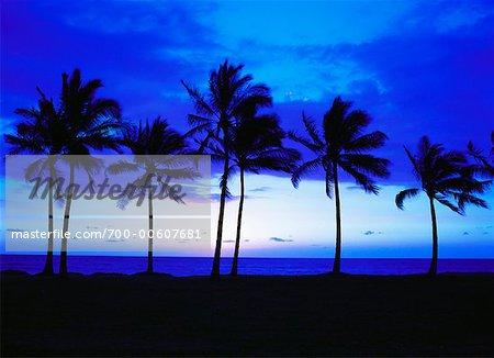 Nanakuli Beach Park at Dusk, Oahu, Hawaii, USA