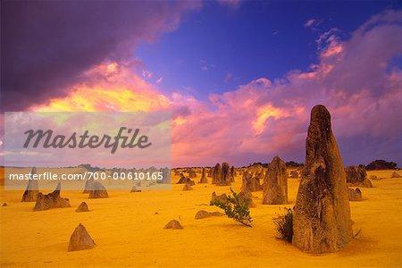 Désert des Pinnacles, Parc National de Nambung, Western Australia, Australie