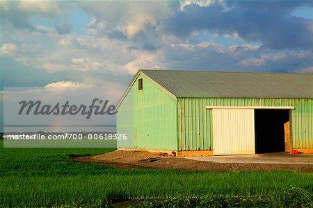 Bâtiment de ferme, Ontario, Canada