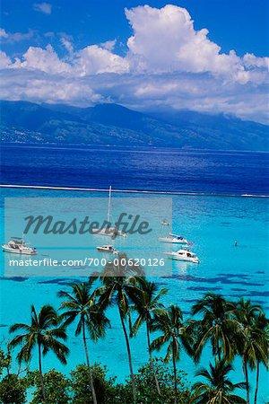 Bateaux à voiles, Moorea, Polynésie française