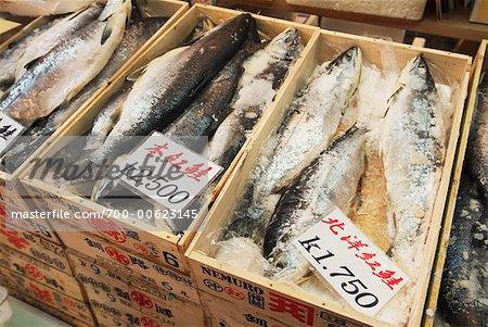 Poisson congelé, marché aux poissons de Tsukiji, Tokyo, Japon