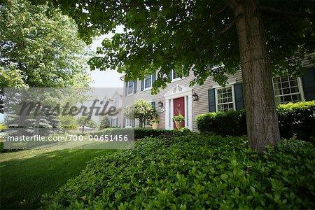 Front Yard et maison