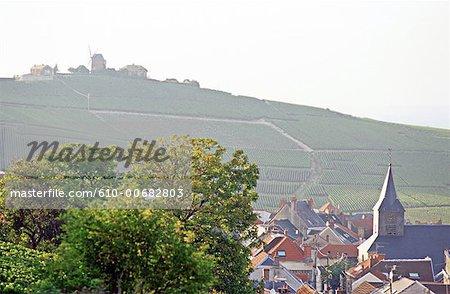 France, Champagne region, Verzenay, vineyard and village