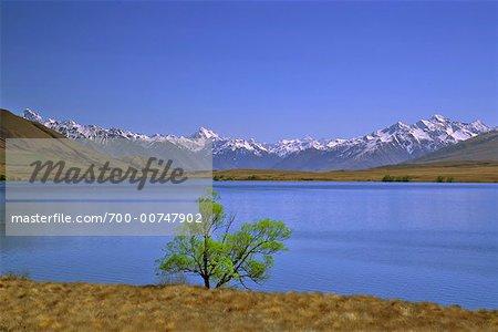 Lake, Rangitata Valley, New Zealand