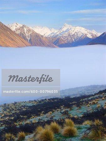Brume matinale, vallée de Rangitata, Nouvelle-Zélande