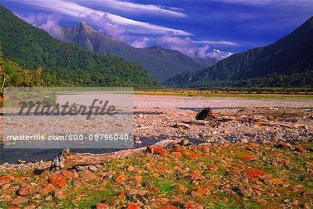 Lichen rouge sur les rochers, Copland Valley, Nouvelle-Zélande
