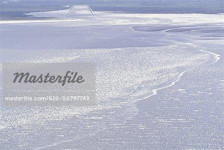 France, Normandie, grand Vey, réserve ornithologique