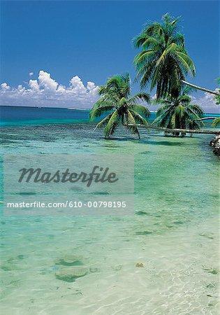 Polynésie, l'île de Moorea, baie d'Opunohu