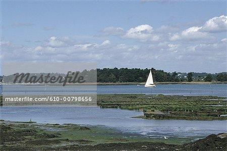 France, Bretagne, golfe du Morbihan, bateau à voile