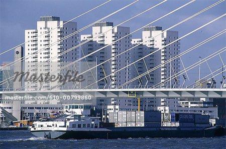 Le pays-bas, la Hollande-méridionale, Rotterdam, cargo sous le pont Erasmus