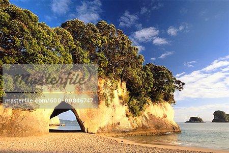 Cathédrale Cove, péninsule de Coromandel, Nouvelle-Zélande, île du Nord