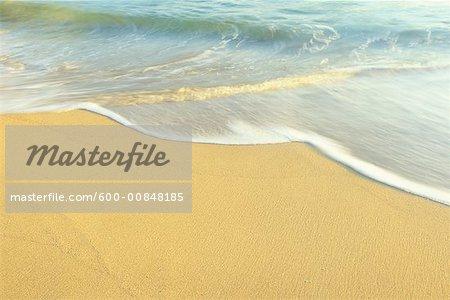 Gros plan du littoral