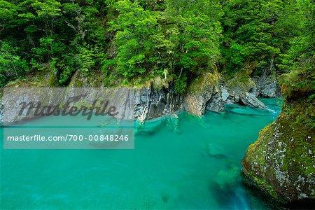 Mount Aspiring National Park, New Zealand, South Island