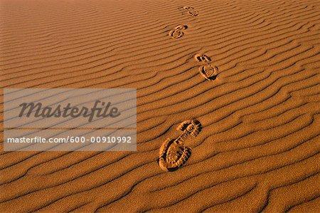 Empreintes de pas dans le désert, Australie-méridionale, Australie