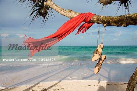 Sarong and Sandals Hanging from Tree, Kiwengwa Beach, Zanzibar, Tanzania