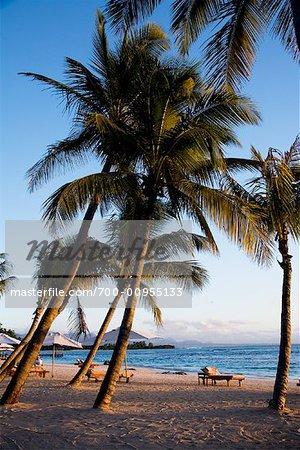 Beach, Ile Maurice