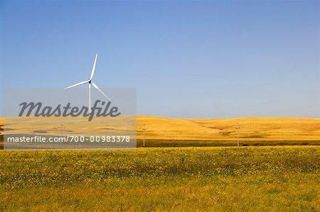 Wind Turbine, Manitoba, Canada