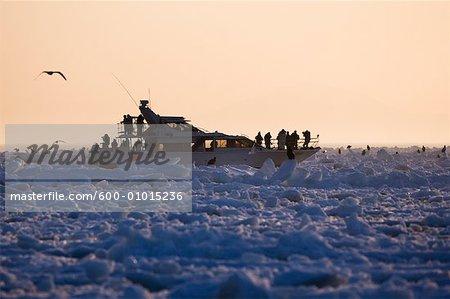Eco-Tourists Photographing Eagles from Boat, Nemuro Channel, Rausu, Hokkaido, Japan