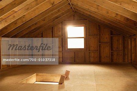 Trap Door and Window in Attic
