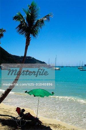 Vue latérale d'une plage de palmiers, St, Martin, Caraïbes