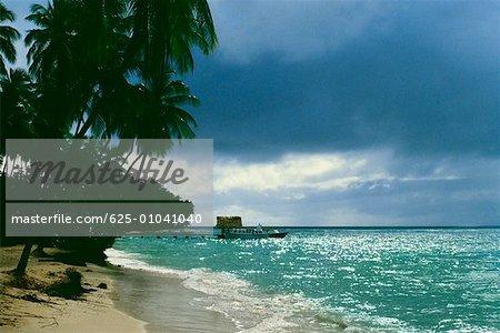 Vue sur une plage pittoresque alignée de palmiers, de Pigeon Point, Tobago, Caraïbes