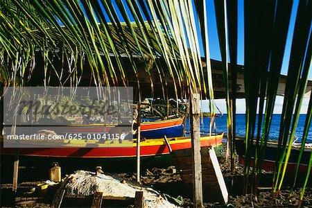 Bateaux est vus dans un village de pêcheurs sur l'île de la Martinique