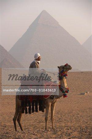 Rider on Camel, Giza Pyramids, Giza, Egypt