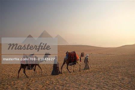 Coureurs feuilletant chameaux, pyramides de Gizeh, Giza, Égypte