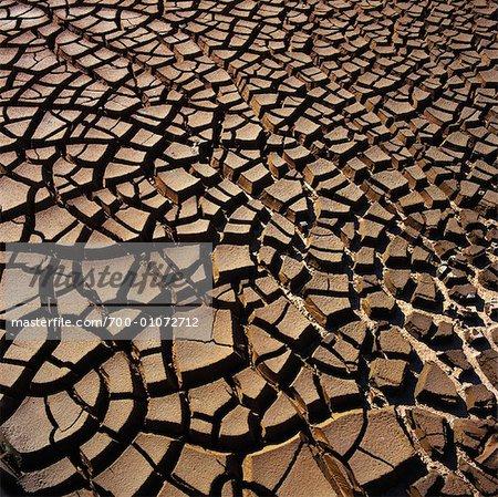 Dry Mud, Axel, Zeeland, Netherlands