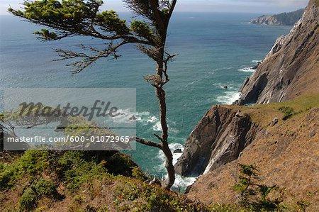 Falaises sur la côte, Oregon, Etats-Unis