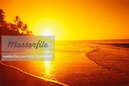 Sunset over the beach, Caribbean