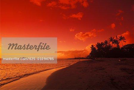 Beach at dusk, Hawaii, USA