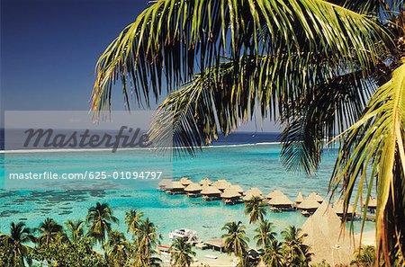 High angle view of beach huts, Hawaii, USA