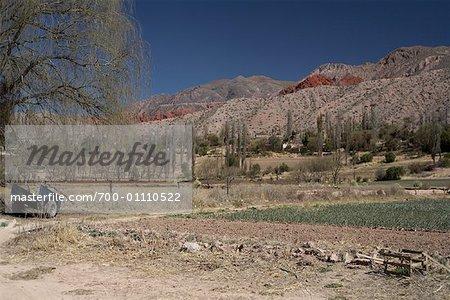 Terres agricoles, Quebrada de Humahuaca, Province de Jujuy, Argentine