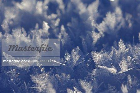 Les cristaux de glace