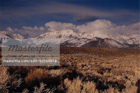 Orientale Sierras, montagnes de Sierra Nevada, Californie, USA